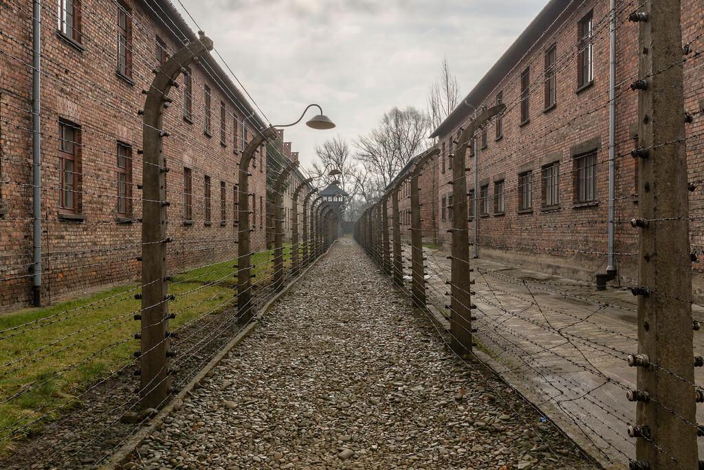 Auschwitz : Auschwitz