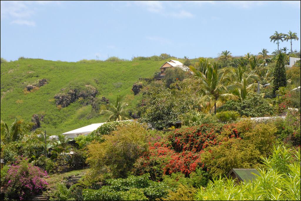 Réunion : Paysage de l'île de la Réunion