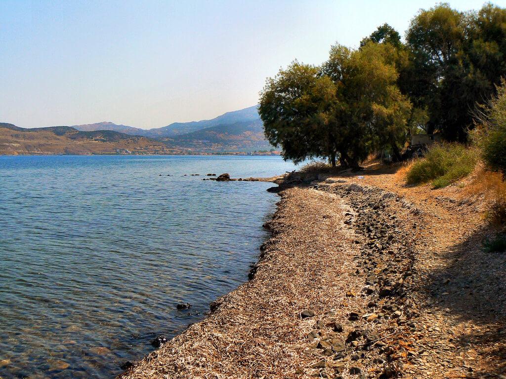 Lesbos : Annaxos coastal walk. Lesbos. Greece.