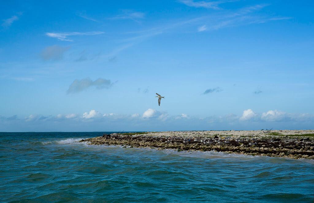 îles Kiribati : Kiritimati - Christmas Island
