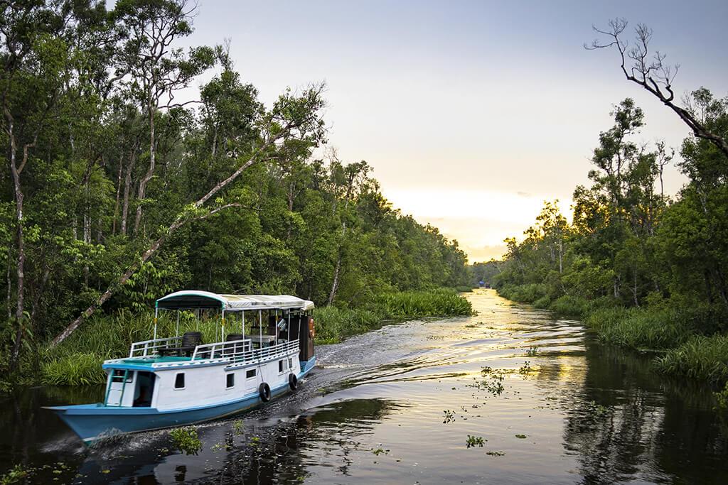 Bornéo - partie indonésienne (Kalimantan) : Kalimantan Borneo