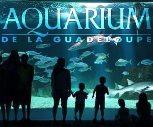 Aquarium de la Guadeloupe (Le Gosier)