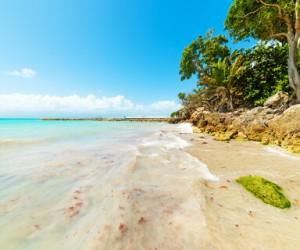 La plage de la Datcha