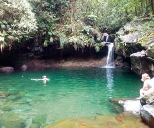 Le bassin Paradis
