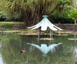 Le jardin d'eau (Goyave)