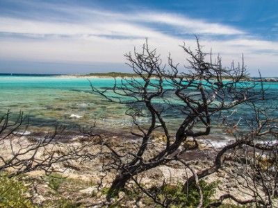 La plage de Piantarella