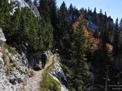 Le sentier Premuzic