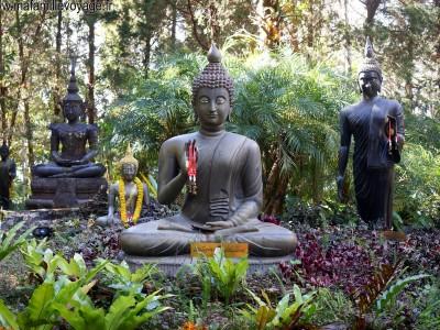 Doi Chang Buddhist Park