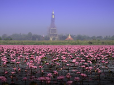 Photo de : Le lac Nong Han