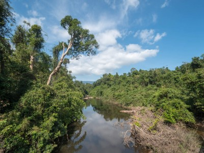 Parc national Khao Yai (éléphants, animaux…)
