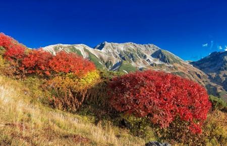 Photo de : Explorer le Japon