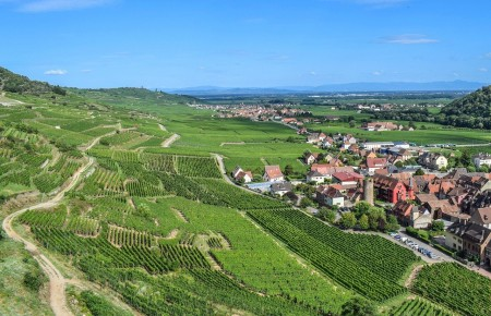 Photo de : Faire la route des vins d'Alsace