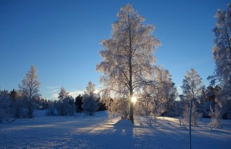 Photo de : Laponie finlandaise