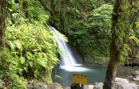 Photo de : Randonner en Guadeloupe