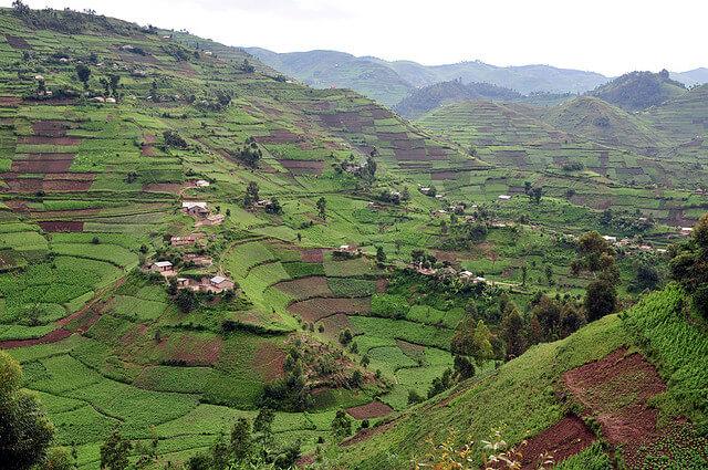 Ouganda : uganda GV6_lo