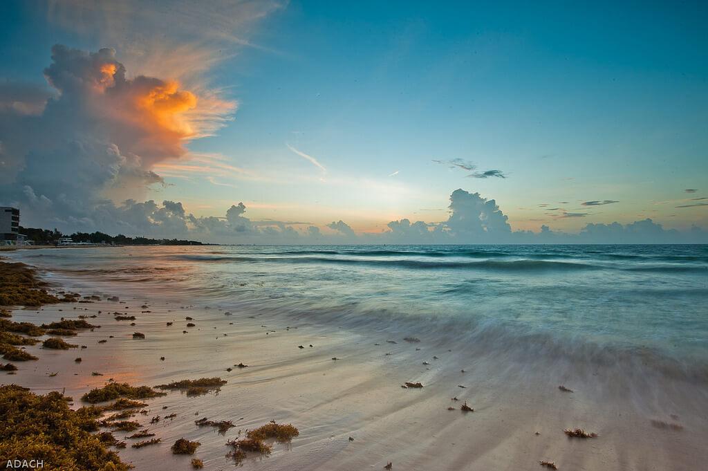 Playa del Carmen : Playa Del Carmen - Mexico-16