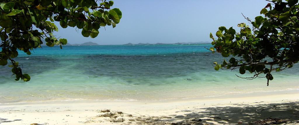Saint-Vincent-et-les-Grenadines : psv2004_7, PSV, Petit St. Vincent