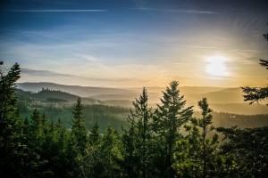 Šumava (Parc national) :