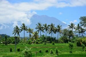 Bali : La vallée luxuriante de Sidemen