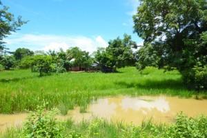 Cambodge : Battambang