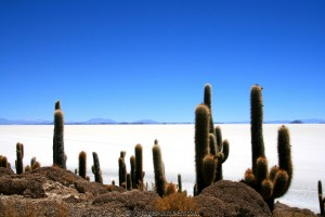 Bolivie : Salar Uyuni - Bolivie
