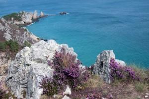 Bretagne : Couleurs de Bretagne