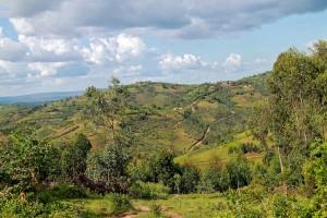 Burundi : Banga, Burundi 4