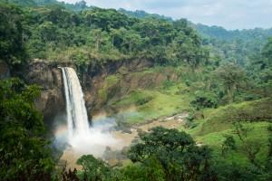 Cameroun : Chutes d'Ekom dans la forêt tropicale (Melong)