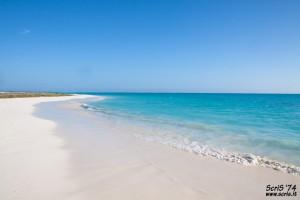 Cayo Largo : Cayo Largo Beach