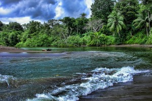 Costa Rica : Rio Aguajitas, Costa Rica