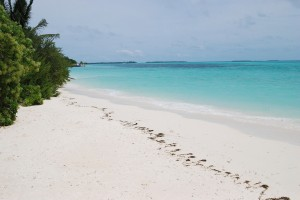 Dhidhdhoo : Just White! in Maldives