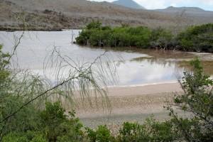 Île Floreana :