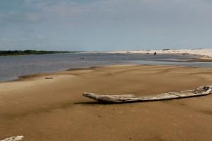Gabon : IMG_6230