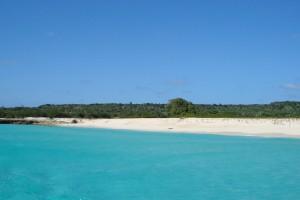 île de la Tortue : Ile de la Tortue