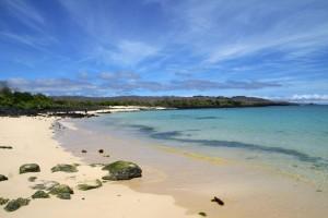 Île Santa Cruz : Galapagos beach, Santa Cruz, Cerro Dragon