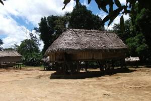 Kwamalasamutu : Typical hut - Kwamalasamutu