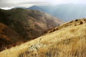 Macédoine : Montagne de Macédoine