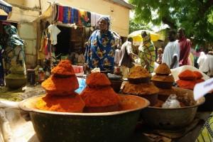 Cameroun : Maroua
