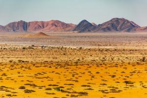 Namibie : La région semi-désertique du Kalahari
