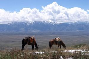 Kirghizistan : Naryn