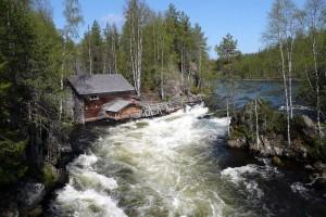 Parc national d'Oulanka :