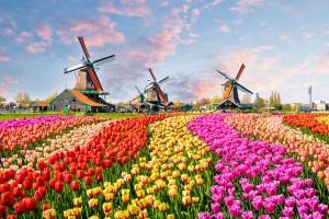 Pays-Bas (Hollande) : Des moulins à vent traditionnels hollandais à Zaanstad