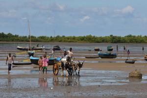 Madagascar : Toliary