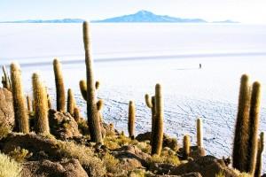 Bolivie : Uyuni