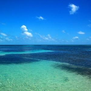 Les Caraïbes