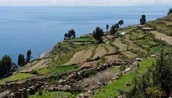 le Juliaca (lac Titicaca)