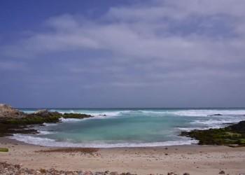 l'archipel de Socotra