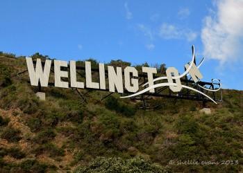 Wellington (île du nord)