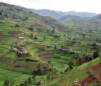 L'Ouganda