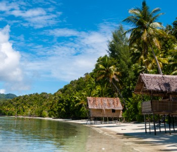 La Papouasie-Nouvelle-Guinée